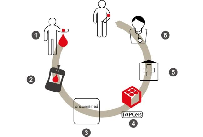 Inmunoterapia-cancer-Kit-Terapeutico-TAPCells-clinica-clinicas-centro-oncologicos-oncologia